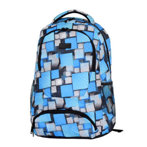 Computer Laptop Sport Backpack with OEM Service pictures & photos