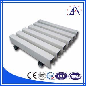Aluminum Panel Decorative Wall Panels/Aluminium Decoration Profile pictures & photos