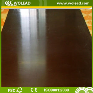 Plywood for Buildings Good Quality and Cheap Price (w15301)