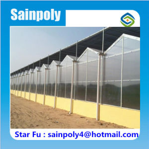 Best Manufacturer PC-Sheet Greenhouse for Commercial pictures & photos