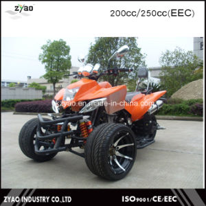 300cc EEC 3 Wheels Trike 200cc Quad ATV pictures & photos