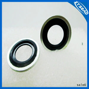 Rubber Bonded Metal Gaskets Self Centered. pictures & photos