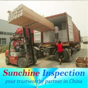 Container Loading Inspection, Inspection Service in Shenzhen, Dong Guan pictures & photos
