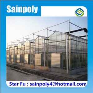 Factory-Direct-Supply Glass Greenhouse for Commercial pictures & photos