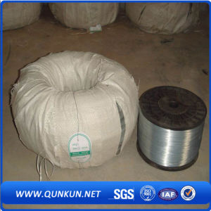 High Carbon and Low Carbon Galvanized Steel Wire pictures & photos