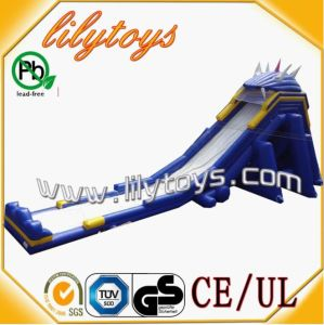 En71 Certificate Inflatable New Originality Water Slide (WS-01JO)