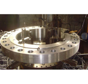 Standard Large Diameter Flange (S0032) pictures & photos