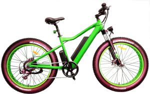 Inner Battery Fat Tire Snow Electric Bicycle pictures & photos