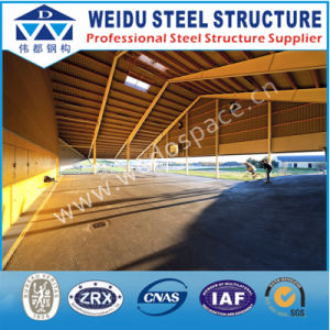 Classical Structure Steel (WD093006)