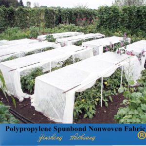 PP Spunbonded Nonwoven Fabrc for Agriculture Cover
