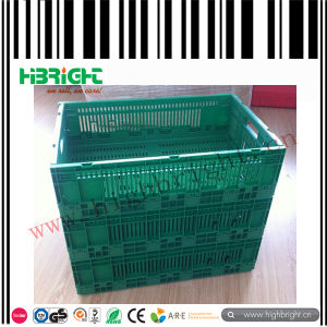 Collapsible Plastic Fruit and Vegetable Foldable Crate pictures & photos