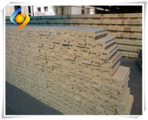 Silica Brick Refractory for Coke Oven pictures & photos