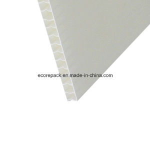 White Opaque Coroplast Sheet pictures & photos