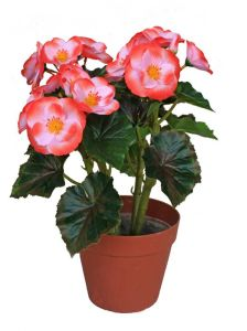 High Quality of Artificial Plants with Flowers Geranium pictures & photos