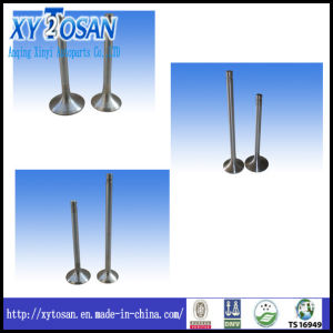 Intake Valve and Exhaust Valve for Mercedes Benz Om 355&346 pictures & photos
