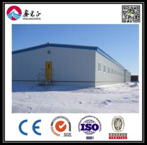 Prefabricated House Warehouse and Workshop with SGS Certification (BYSS051906) pictures & photos
