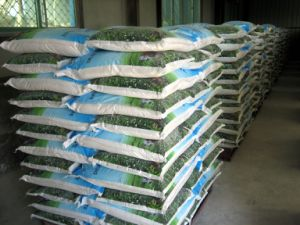 Mono Calcium Phosphate Mcp Feed Additive pictures & photos