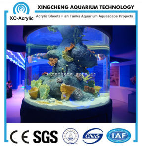 Transparent Cylindrical PMMA Fish Tank of Aquarium Project pictures & photos