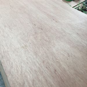 BB/CC Grade Plywood of Lauan for Furniture pictures & photos