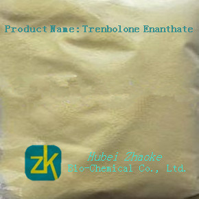 Bodybuilding Yellow Hormone Powder of Trenbolone Enanthate 99% pictures & photos