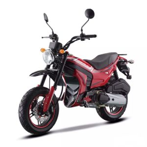 New Motorcycle with CVT Automatic Engine pictures & photos