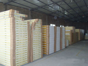 Food Grade Insulated Panel for Cold Room pictures & photos