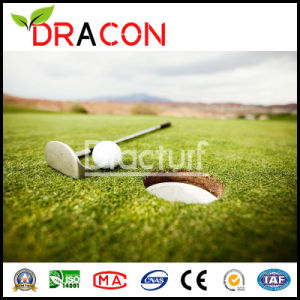 Fashion Artificial Golf Grass Green Turf (G-1052) pictures & photos