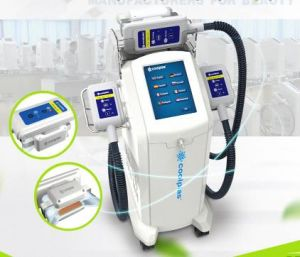 Affordable Price Best Effective Sincoheren Freeze Fat Coolplas Cryolipolysis Machine pictures & photos