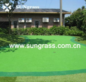 High Quality Multifunction Artificial Grass From Sungrass (PA-1500) pictures & photos