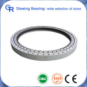Crane Slewing Bearing and Excavator Parts