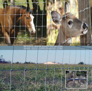 Hinge Joint Field Fence pictures & photos