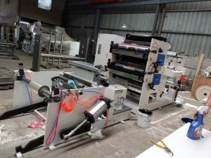Flexographic Printing Machine Two Color 680mm-850mm pictures & photos