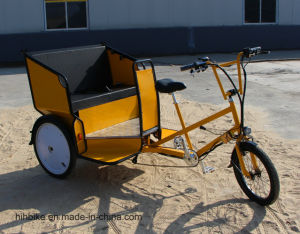 Deluxe Pedal and Electric Rickshaw by Factory pictures & photos