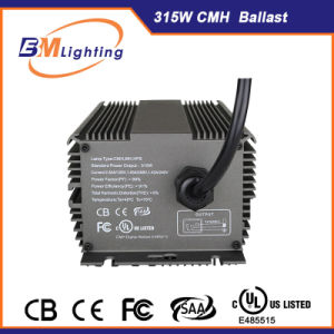 Wholesale HID Electronic Grow Light Ballast with UL Listed pictures & photos