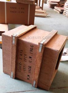 Tdgc2 Voltage Regulator with Copper Coil pictures & photos