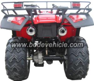 New 250cc Utility Farm ATV (MC-373) pictures & photos