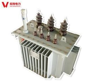 Oil Transformer/S11-800kVA Electric Power Transformer pictures & photos