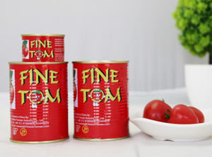 70g 2.2kg Gino Tomato Paste Double Concentrated Tomato China Factory pictures & photos