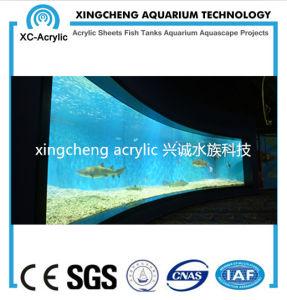 Tranparent Acrylic Material Glass Sheet Aquarium Price pictures & photos