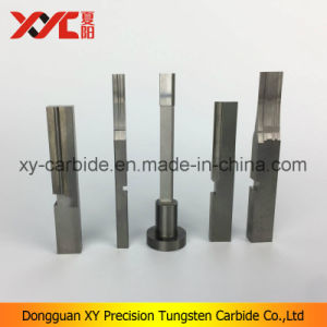 Carbide Stamping Parts with Profile Grinding Punch pictures & photos