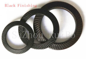 Stainless Steel/Carbon Steel DIN9250 Lock Washer pictures & photos