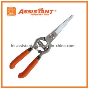 Garden Scissors Bypass Pruning Shears Comfort Hand Pruners pictures & photos