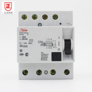 Siemens RCCB for Switch Protecting, ELCB with High Quality pictures & photos