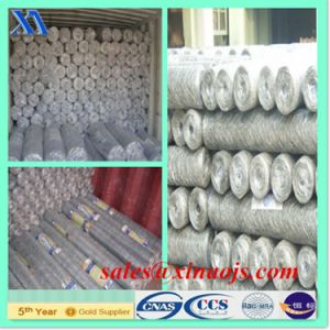 Manufacturer of Cheap Anping PVC Coated Hexagonal Mesh pictures & photos