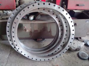 Stainless Steel Flanges /Forged Flange pictures & photos