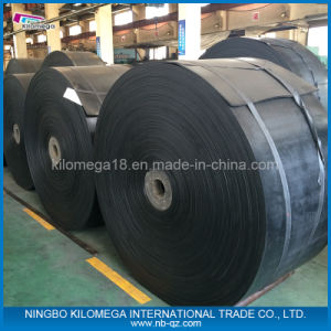 Carrier Roller Manunfacturer to The Imported Market pictures & photos