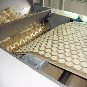 Good Price Biscuit Equipment pictures & photos