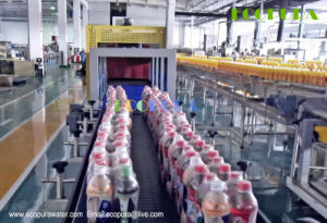 Automatic Bottle PE Film Shrink Wrapping Machine pictures & photos