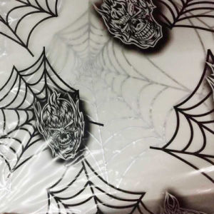 Tsautop 0.5/1m Width Water Transfer Printing Film Hydrographics Skull Spider Film pictures & photos