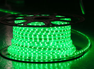 Yellow Color 60LEDs SMD5630 220V IP65 LED Rope Light pictures & photos
